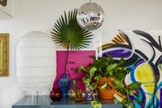 Plants, glassware, a lamp, and a disco ball.