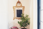 An ornate gold mirror and a potted lemon tree in an entryway