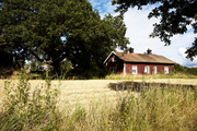 A home tucked into the fields of the Swedish countryside