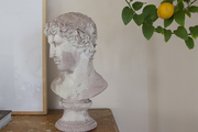 A lemon-tree branch framing a tablescape of a classical bust atop a wood console