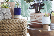 An assortment of ceramic planters displayed on side tables