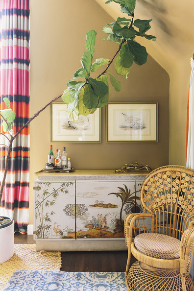 Point Counterpoint Fiddle Leaf Fig Trees