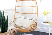 A dog sits by a hanging chair in a child's room.