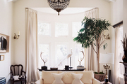 White walls, couches, and curtains, accented by a ficus tree