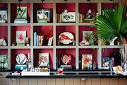 A bar in front of a bookcase filled with tropical finds