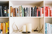 Books arranged by color and a grouping of antlers on white shelves