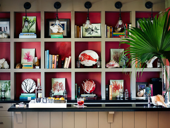 Red Bookshelf - A bar in front of a bookcase filled with tropical finds