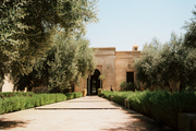 A home in the olive groves outside Marrakech