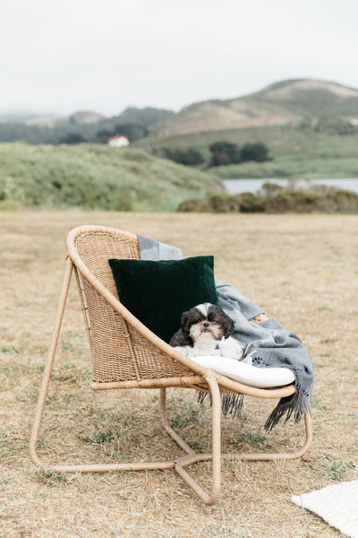Wicker Chair Photos (1 of 44) []