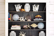A whitewashed bookcase stocked with coral and sea finds