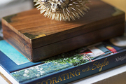 A blowfish on a stack of design books and an old box