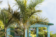 A pastel guest suite landscaped with palm trees and flowering foliage