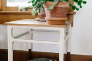 A detail of a potted plant on a white side table.