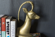 A stag-head paperweight on a stack of books
