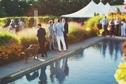 Wedding guests mingling around a pool