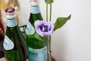 A simple purple flower on a brushed gold bar cart
