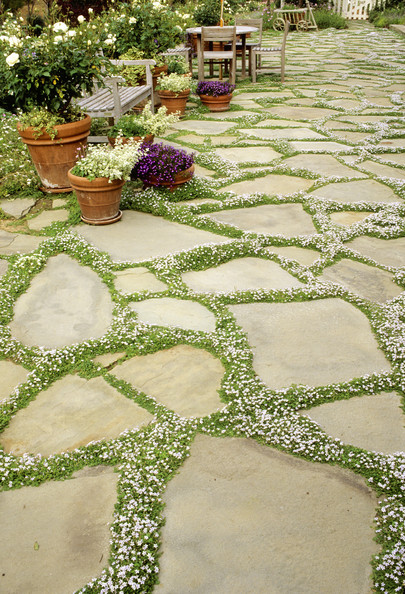 Paving Stones Photos, Design, Ideas, Remodel, and Decor - Lonny