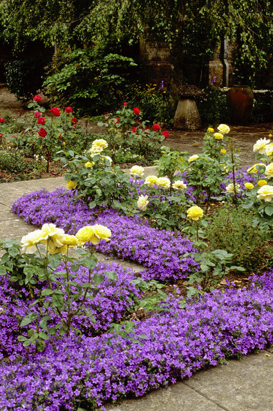 Rose Garden Photos, Design, Ideas, Remodel, and Decor - Lonny