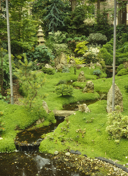 Oriental Garden Photos, Design, Ideas, Remodel, And Decor - Lonny