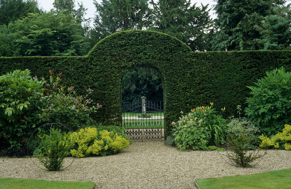Topiary Photos (27 of 90) []
