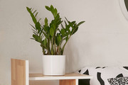 10 New Urban Outfitters Items Your Apartment NEEDS