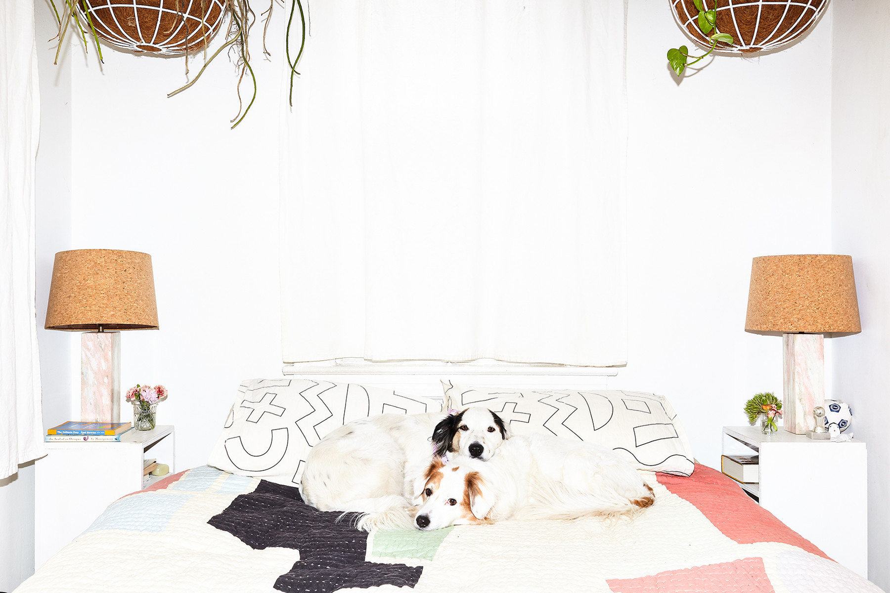 The couple's pups rest on a bed decorated with Dusen Dusen sheets and pillows, and a Cold Picnic quilt.