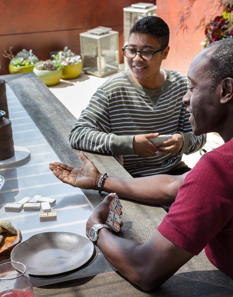 Cool Domino Sets Inspired by Bridgid Coulter and Don Cheadle