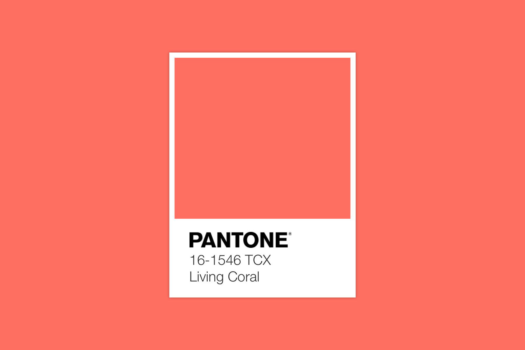 The Pantone Color Of The Year 2019 Is Here