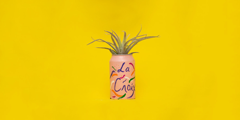 We Are OBSESSED With This La Croix Planter