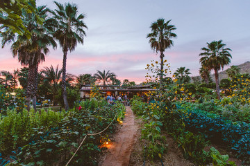 How A Mexican Farm-To-Table Restaurant Is Redefining Experiential Travel