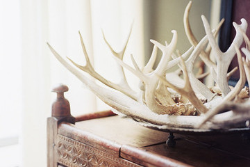 24 Ideas for Decorating With Antlers