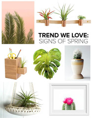 Trend We Love: Signs of Spring