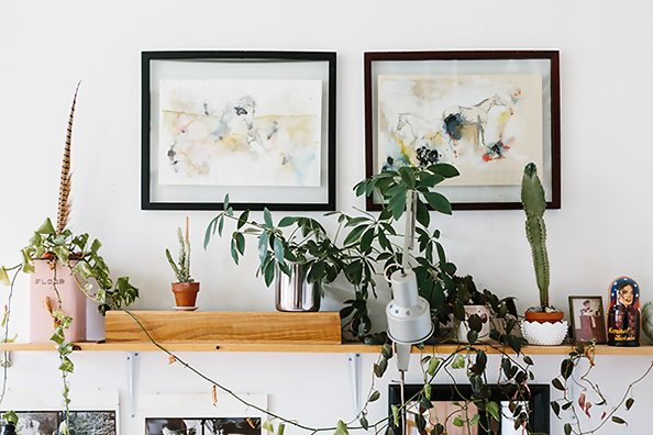 The Guide To Keeping Your Houseplants Alive