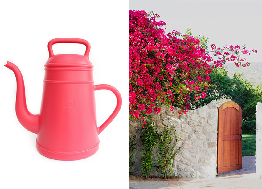 Garden and Watering Can Pairs | Lonny.com