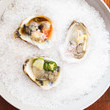 Cocktail Oysters