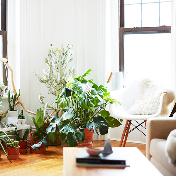 10 Tiny Changes To Help Your Home Go Green